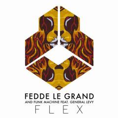Flex (Single) - Fedde Le Grand, Funk Machine