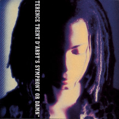 Symphony Or Damn - Terence Trent D'Arby