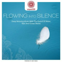 entspanntSEIN - Flowing Into Silence (Deep Relaxing Music with The Sound of Water, Rain and Ocean Waves) - Jens Buchert