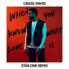 When You Know What Love Is (Star.One Remix) - Craig David