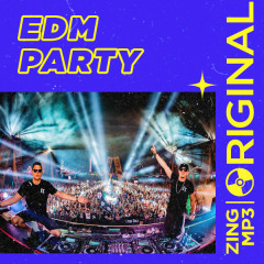 Wazzup: Party With EDM - The Chainsmokers, Calvin Harris, Alan Walker, Zedd