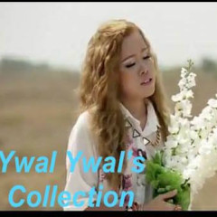 Ywal Ywal's Collection