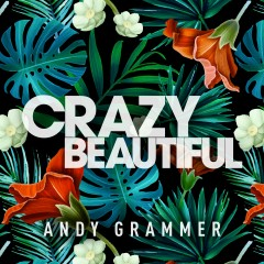Crazy Beautiful EP - Andy Grammer