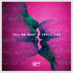 Tell Me What It Feels Like (Single)