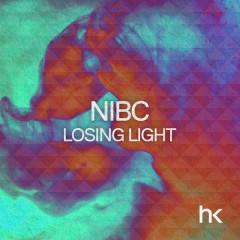 Losing Light (Remixes)