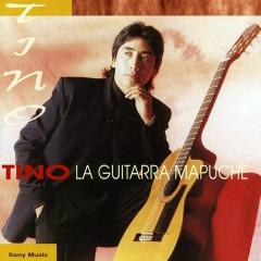 Tino, la Guitarra Mapuche