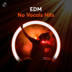 EDM No Vocals Hits