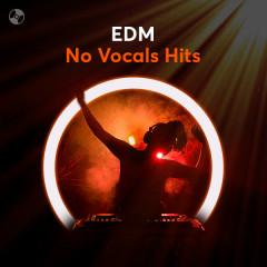 EDM No Vocals Hits - Various Artists