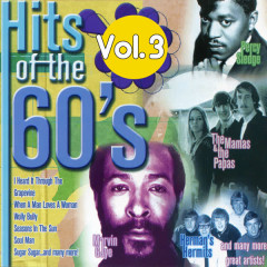 Hits Of The 60s Volume 3 - Various Artists