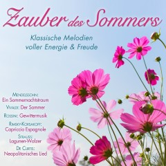 Zauber des Sommers - Various Artists