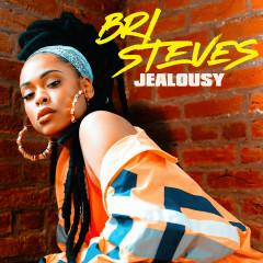 Jealousy - Bri Steves