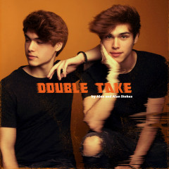 Double Take by Alex and Alan Stokes - Various Artists