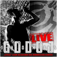 13 Pfeile - Live - Thomas Godoj