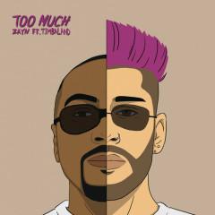 Too Much (Single) - ZAYN