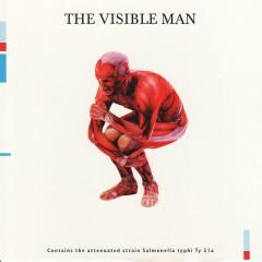 The Visible Man - David Byrne