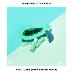 Fractures (tofû & Ngyn Remix) - James Mercy