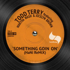 Somthing Going On (Hani Remix) - Todd Terry, Martha Wash, Jocelyn Brown
