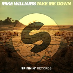Take Me Down - Mike Williams