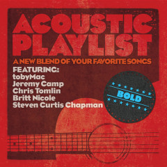 Acoustic Playlist: Bold - A New Blend Of Your Favorite Songs - Various Artists