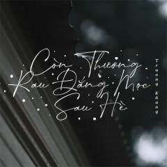 Còn Thương Rau Đắng Mọc Sau Hè (Lofi Version) (Single)
