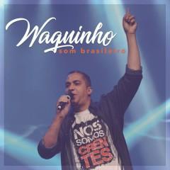 Som Brasileiro - Waguinho