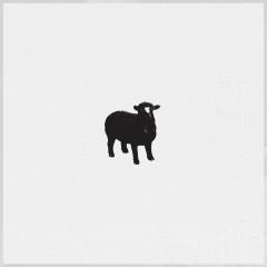 Det Svarta Fåret - Eric Saade