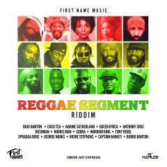 Reggae Segment Riddim - Various Artists