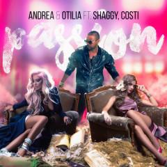 Passion - Andrea, Otilia, Shaggy, Costi