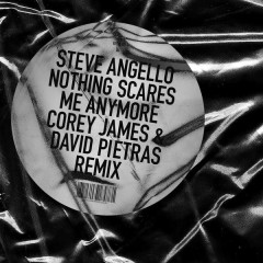 Nothing Scares Me Anymore (Corey James & David Pietras Remix) - Steve Angello
