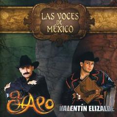 Las Voces De México - El Chapo, Valentín Elizalde