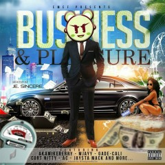 Business & Pleasure - Various Artists