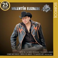 Íconos 25 Éxitos - Valentín Elizalde