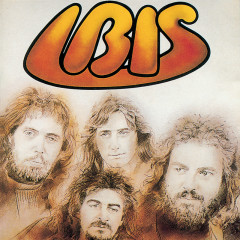 Ibis - Ibis