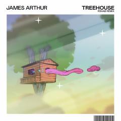 Treehouse (R3HAB Remix) - James Arthur