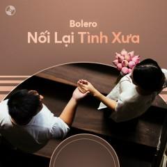 Nối Lại Tình Xưa - Lưu Ánh Loan, Như Quỳnh, Mạnh Quỳnh, Various Artists, Quỳnh Trang