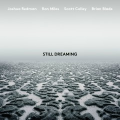 Still Dreaming (feat. Ron Miles, Scott Colley & Brian Blade) - Joshua Redman, Brian Blade, Ron Miles, Scott Colley