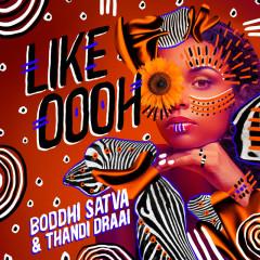 Like Oooh - Boddhi Satva, Thandi Draai