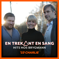 En Trekant En Sang 8 - Hits Hos Brygmann - Various Artists