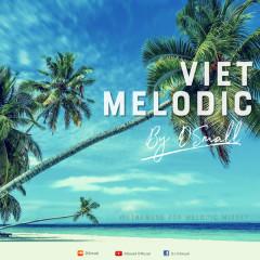 Viet Melodic - DJ DSmall