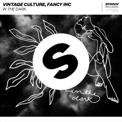In The Dark - Vintage Culture, Fancy Inc
