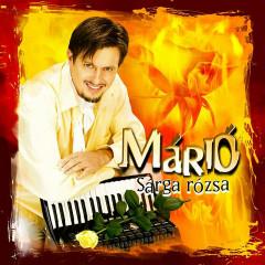Sárgarózsa - 마리오(Mario)