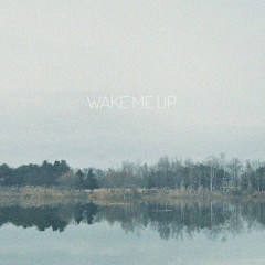 Wake Me Up (Single)