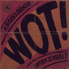 Wot! - LaBrassBanda, Captain Sensible