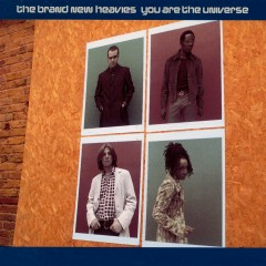 You Are the Universe - The Brand New Heavies