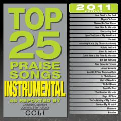 Top 25 Praise Songs Instrumental 2011