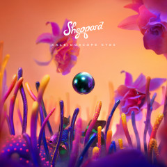 Kaleidoscope Eyes - Sheppard
