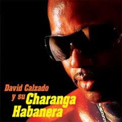 David Calzado y Su Charanga Habanera (Remasterizado) - David Calzado y Su Charanga Habanera