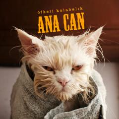Ana Can - Ofkeli Kalabalik