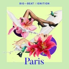 Big Beat Ignition: Paris - Various Artists
