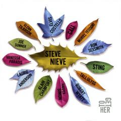 ToGetHer - Steve Nieve